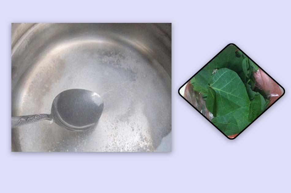 Cho lá vông đã chuẩn bị ngâm với nước muối pha loãng